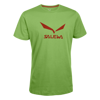 Męski T-shirt Salewa SOLIDLOGO CO M S/S